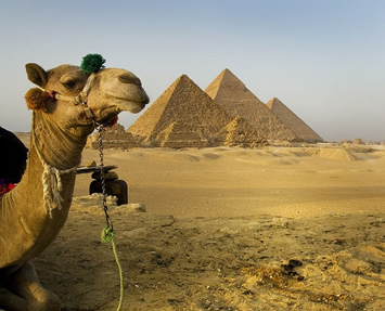 from Rashad gay tours egypt