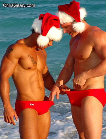 Pied piper gay vacations home page