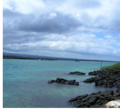 Galapagos Islands Gay Group Cruise 2018 On Celebrity Xpedition  Happy Gay Tr
