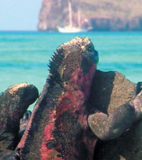 Galapagos Islands Gay Group Cruise