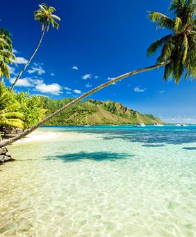 Australia Whitsunday Islands Au Naturel Nude Gay Sailing