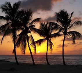 Caribbean Grenadines Au Naturel Naked Gay Sailing Cruise