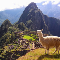 Machu Picchu All-Lesbian Adventure Tour