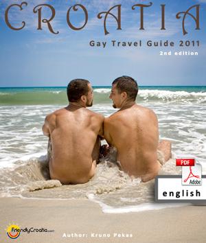 Gay travel companion