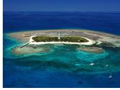 Explore Amedee Island