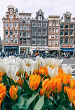 Amsterdam, Holland Gay Tour