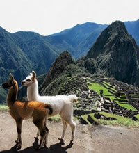 Peru, Machu Picchu 12 Days Gay Tour