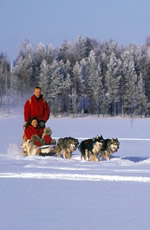 Finland Christmas Gay Holidays